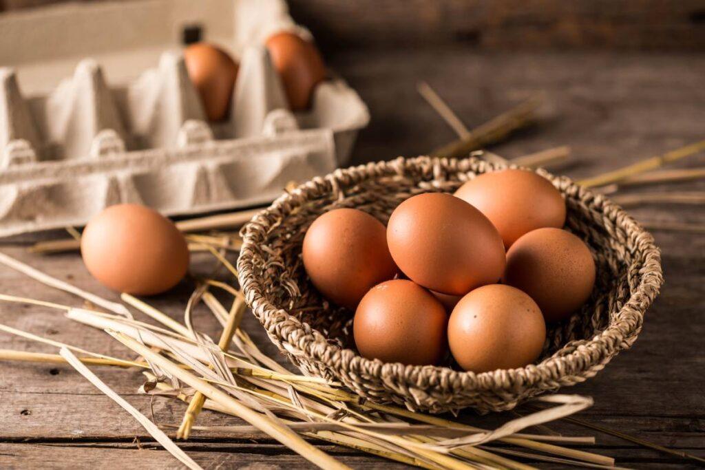 Organik Yumurtayı Anlamanın Yolları! Püf Noktaları Neler?