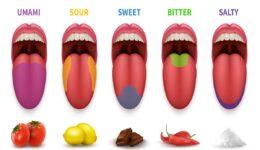 Umami Nasıl Bir Tat Hangi Yiyeceklerde Umami Hissedilir