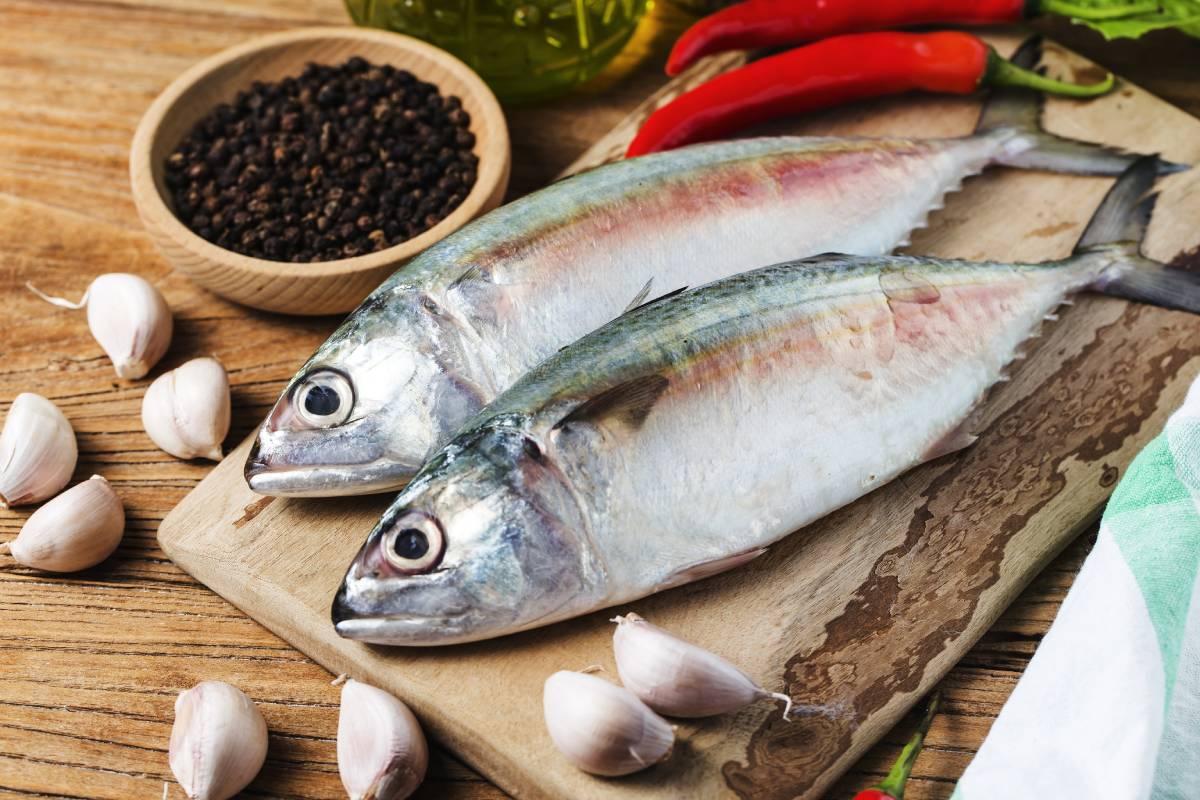 Uskumru Balığı Nasıl Temizlenir? Ayıklama Yöntemi Nedir?