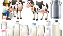 Taze Süt İle Uzun Ömürlü Süt Arasındaki Farklara Dikkat