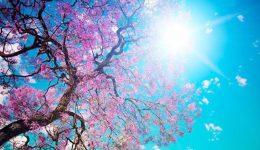 21 Mart Nevruz Bayramı Sözleri