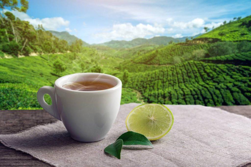 Yeşil Çayın Kalbe Zararı Var Mı?