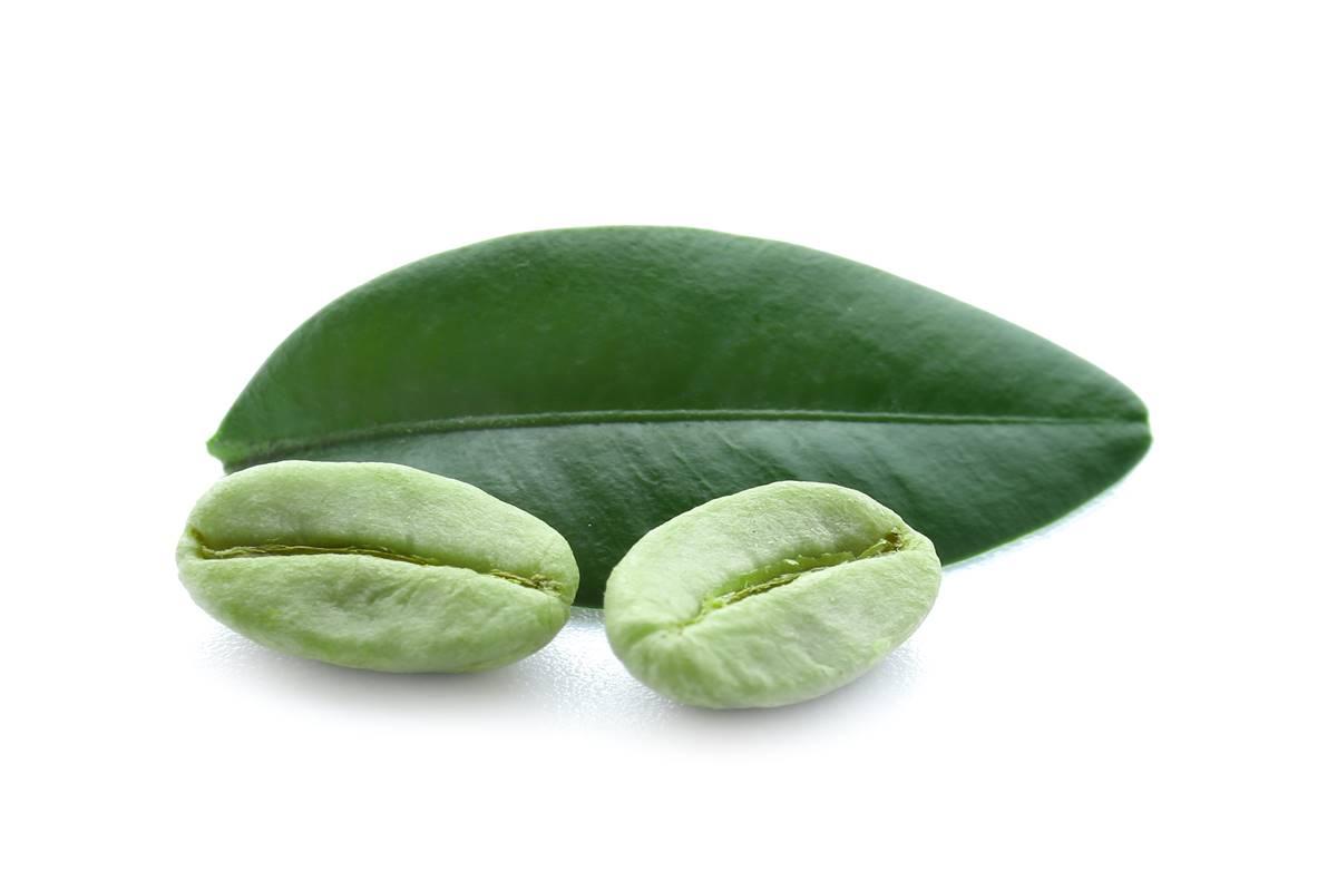 Yeşil Kahve ile Sağlıklı Yaşam ve Zayıflama Formülü