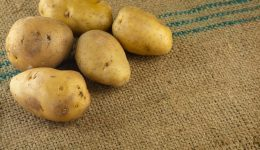 Patates Nasıl Saklanır? Tomurcuklanmasını Önleme Yolları