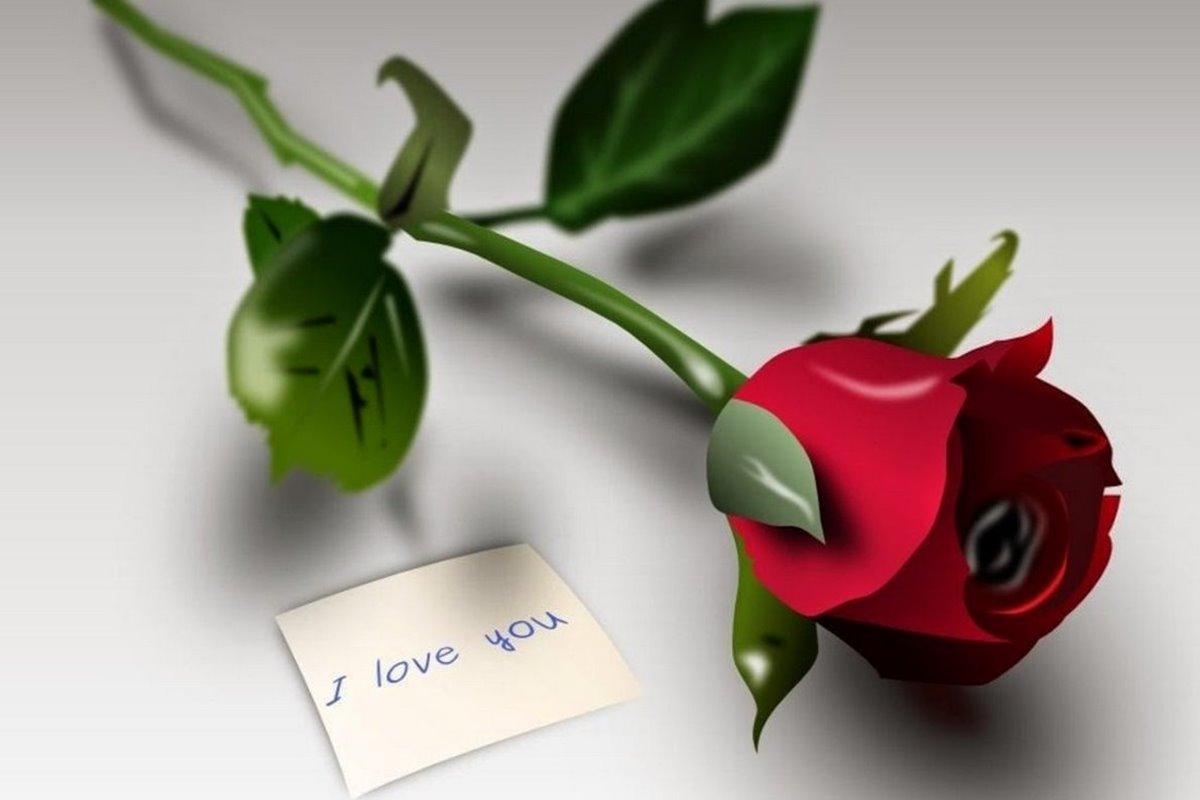 Seni Seviyorum Çünkü Sözleri