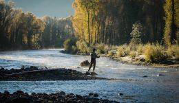 Nehir ile İlgili Sözler