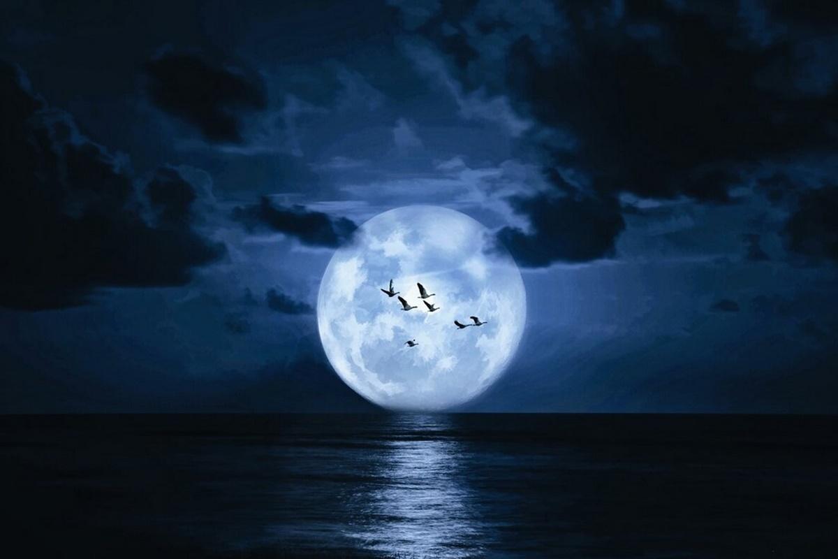 Ay İle İlgili Sözler