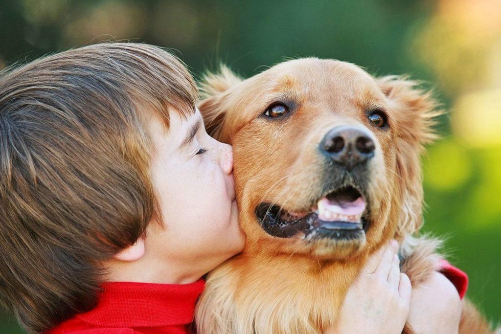 Hayvan Sevgisi ile İlgili Sözler