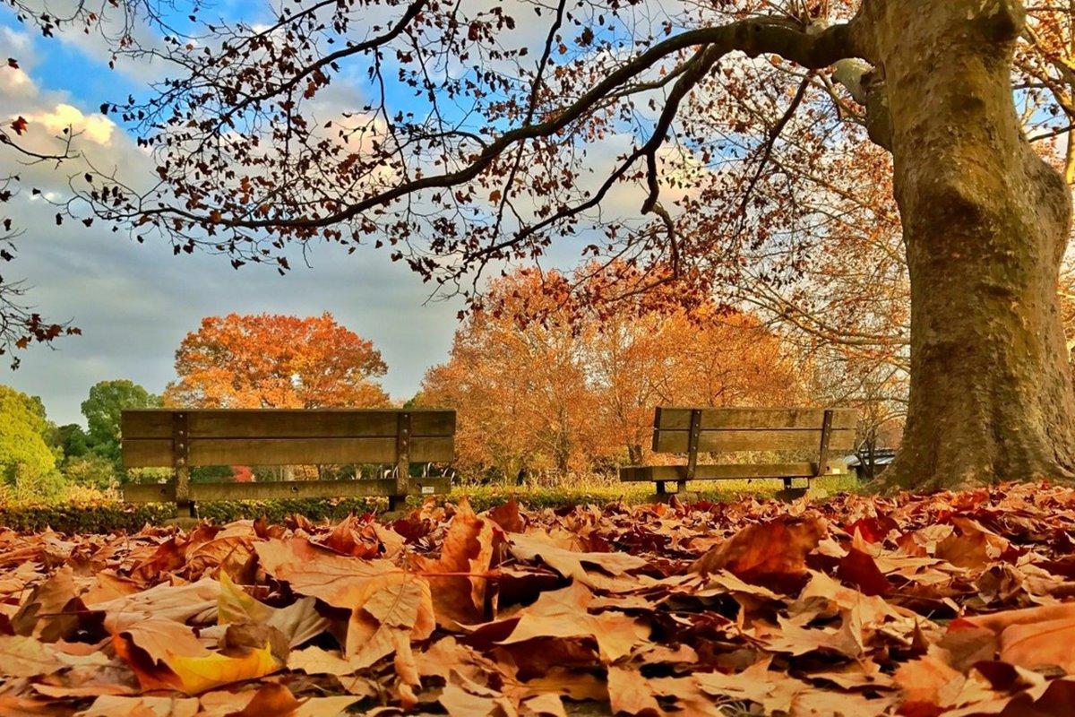 Sonbahar ile İlgili Sözler