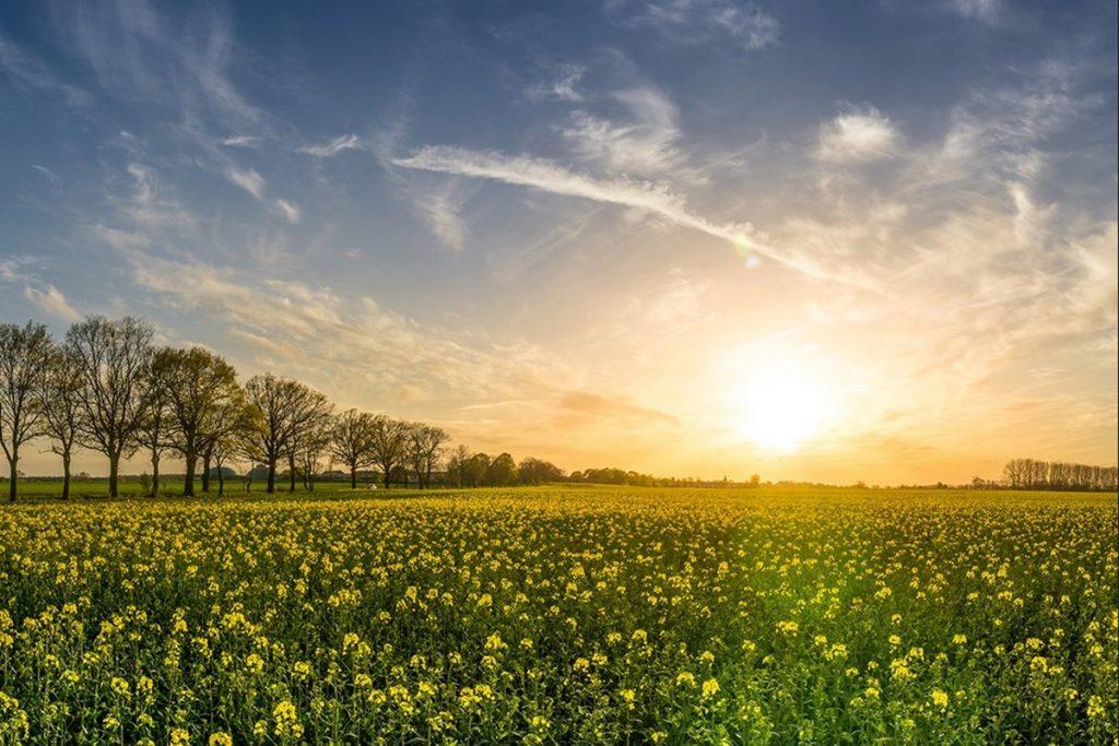Güneşli Günler İle İlgili Sözler