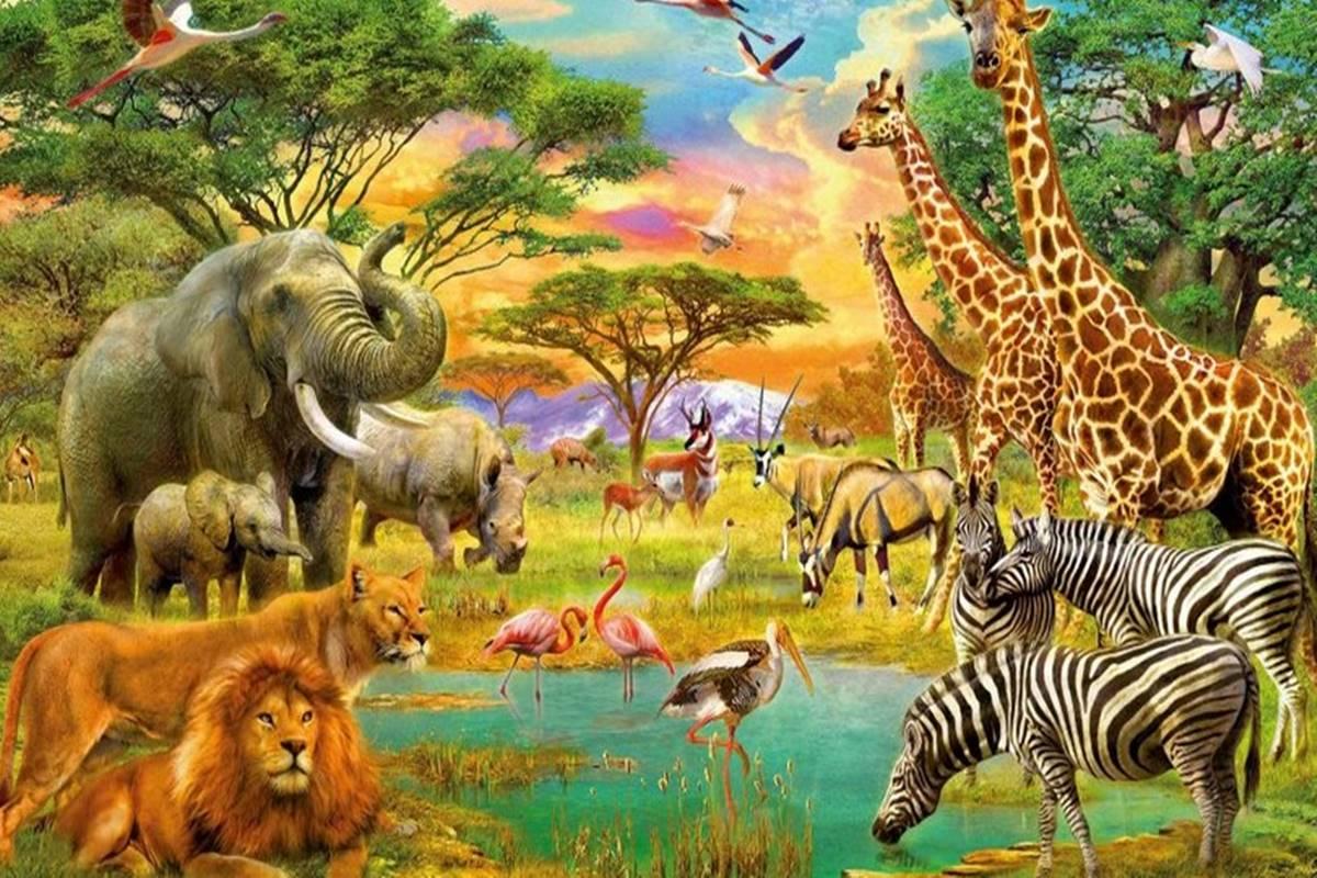 Hayvanlarla İlgili Bilmeceler ve Cevapları