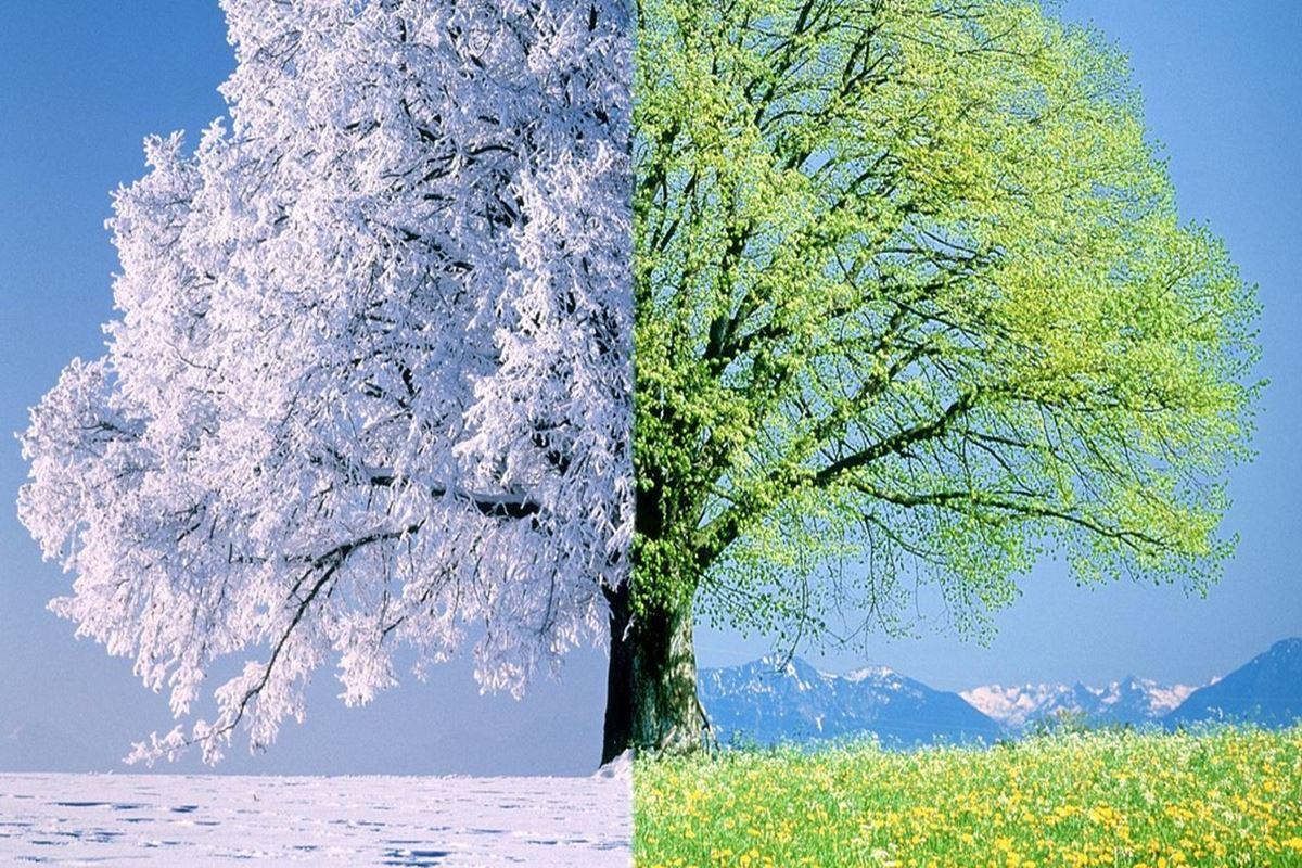 Yazın Yersin Yaşını Kışın Yersin Başını Bilmecesi