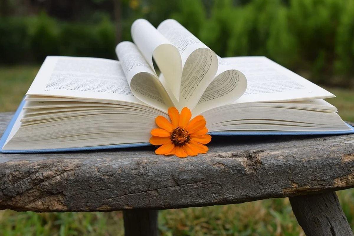 Kitap ile İlgili Bilmeceler