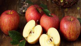 Elma ile İlgili Bilmeceler