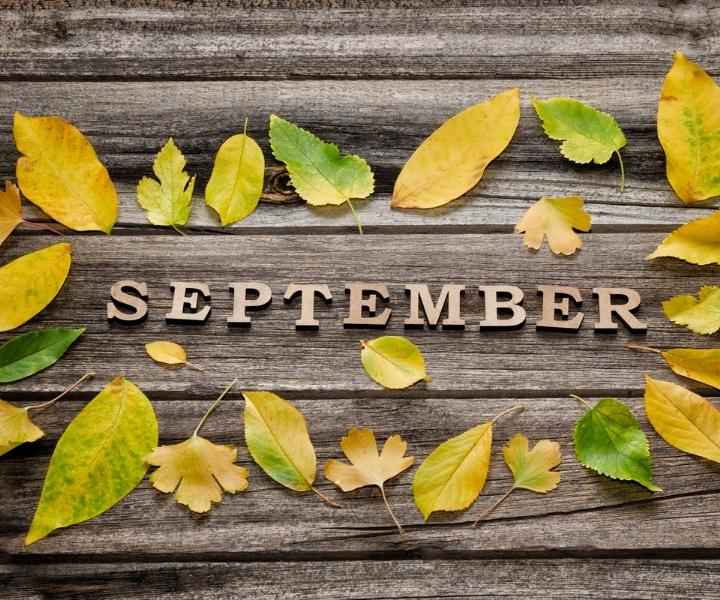 Eylül ismi ile ilgili sözler